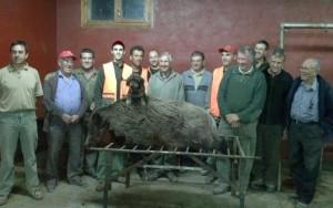 porc 140 kg (4) (edit)